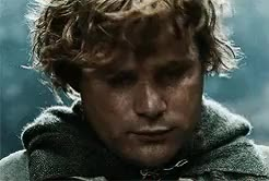 Watch and share Samwise Gamgee GIFs and Frodo Baggins GIFs on Gfycat