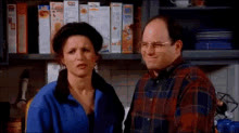 george costanza, julia louis-dreyfus, nice, seinfeld, Seinfeld George GIFs