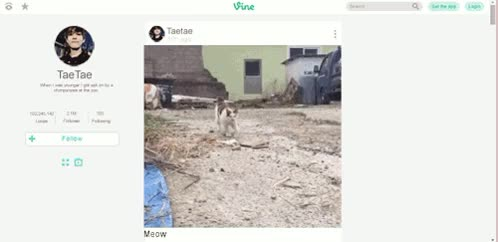 Watch and share The Quality Is Shit GIFs and I Need Sleeo GIFs on Gfycat