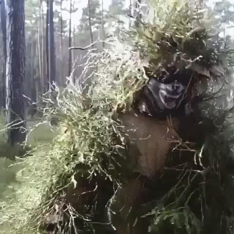 Impressive shrubbery camouflage GIFs