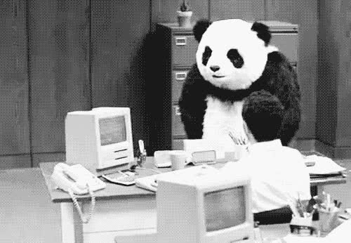 angry, breaking stuff, destruction, office, panda, rage, work, workplace, Angry Panda GIFs