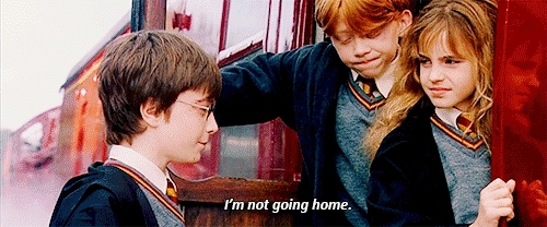 harry potter, hp, hp1, hpedit, philosopher's stone, columbus; GIFs