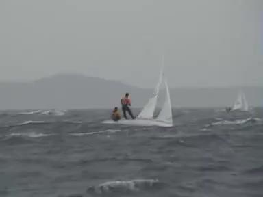 Sailing, Sailing #3 GIFs