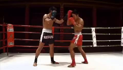 Watch muay thai counter techniques Fists GIF on Gfycat. Discover more related GIFs on Gfycat