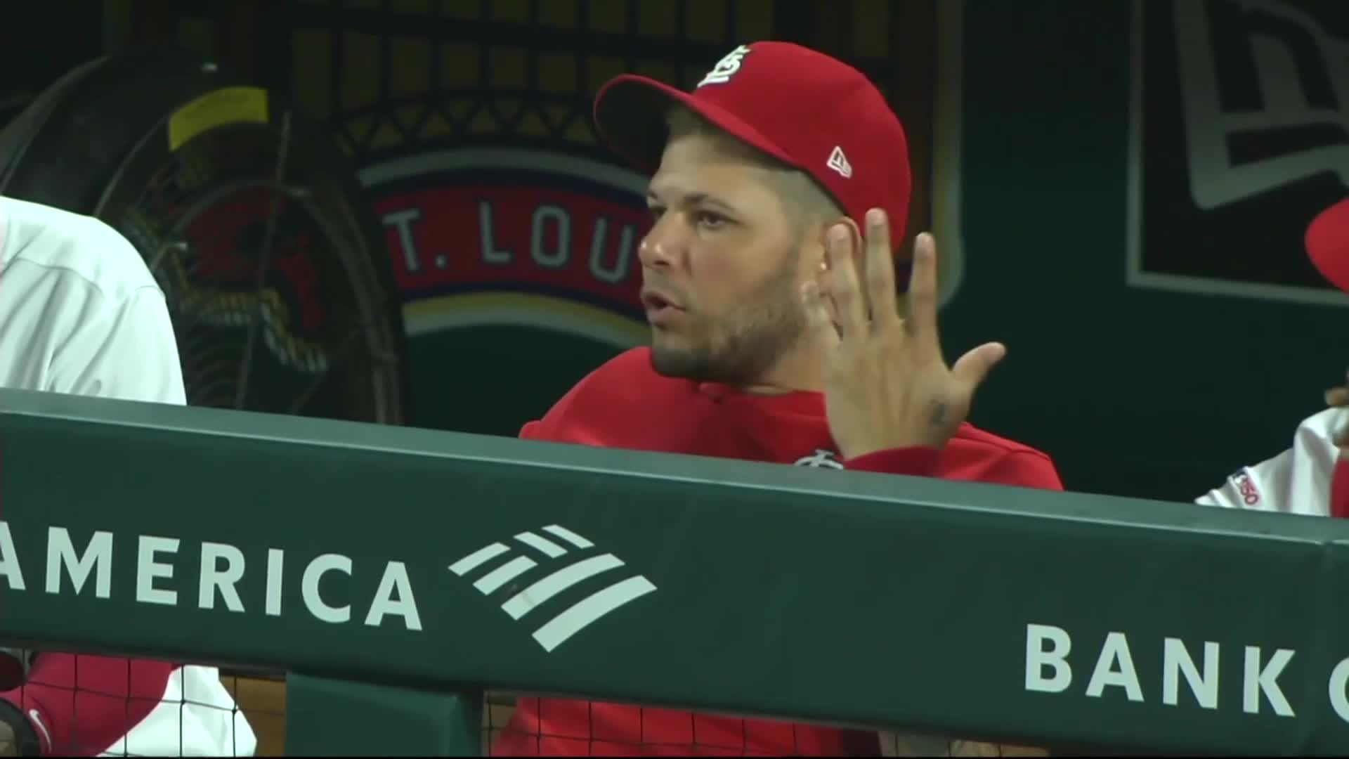 baseball, cardinals, st. louis, Yadier Molina shrugging after Wieters fly out. GIFs
