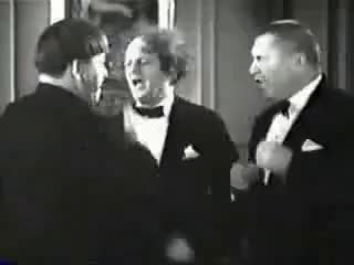 Watch and share Stooges GIFs on Gfycat
