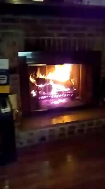Watch and share Pam Kerrigan GIFs on Gfycat
