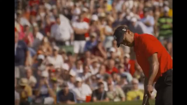 Watch and share Tiger Woods GIFs and Nailed It GIFs by Reactions on Gfycat