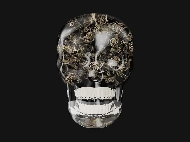 Watch and share Skull-new GIFs by berdvaye on Gfycat
