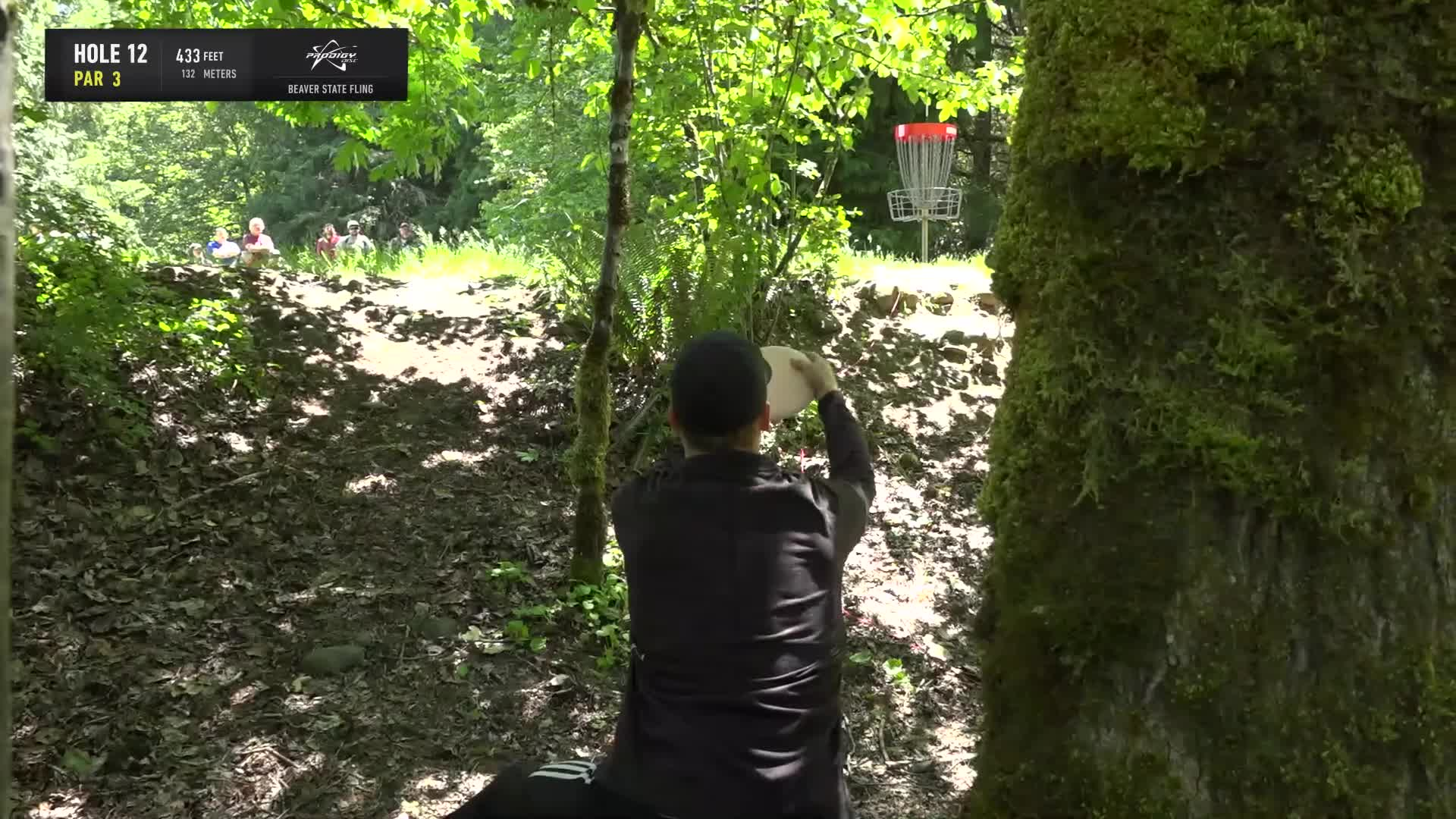 ace, bsf, dela, delaveaga, dgpt, dgwt, disc, disc golf, frolf, hole in one, masters cup, mcbeast, milo, nate sexton, nt, paul mcbeth, pdga, simon lizotte, tournament, worlds, 2019 Beaver State Fling - Round 3 Part 2 - Seppo Paju hole 12 putt GIFs