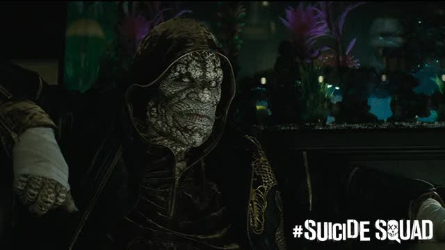 Watch Suicide Squad GIF on Gfycat. Discover more related GIFs on Gfycat