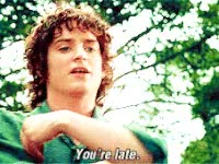 Watch and share Lord Of The Rings GIFs and Lotr GIFs on Gfycat