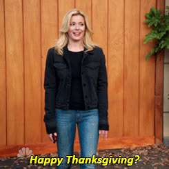 feast, happy thanksgiving, holiday, thanksgiving, turkey day, Thanksgiving GIFs