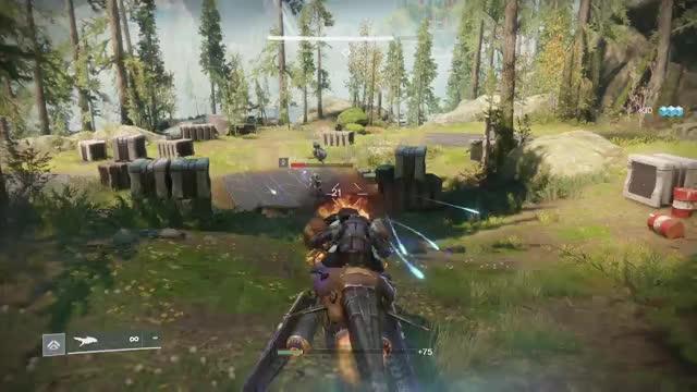 Watch and share Destiny 2 GIFs by Brak on Gfycat