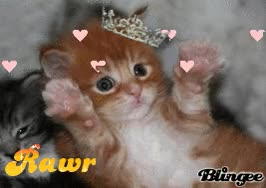 Watch Rawr kitten GIF on Gfycat. Discover more related GIFs on Gfycat