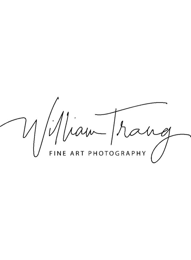 Watch and share Wedding Photographer Near Me GIFs by williamtrang on Gfycat