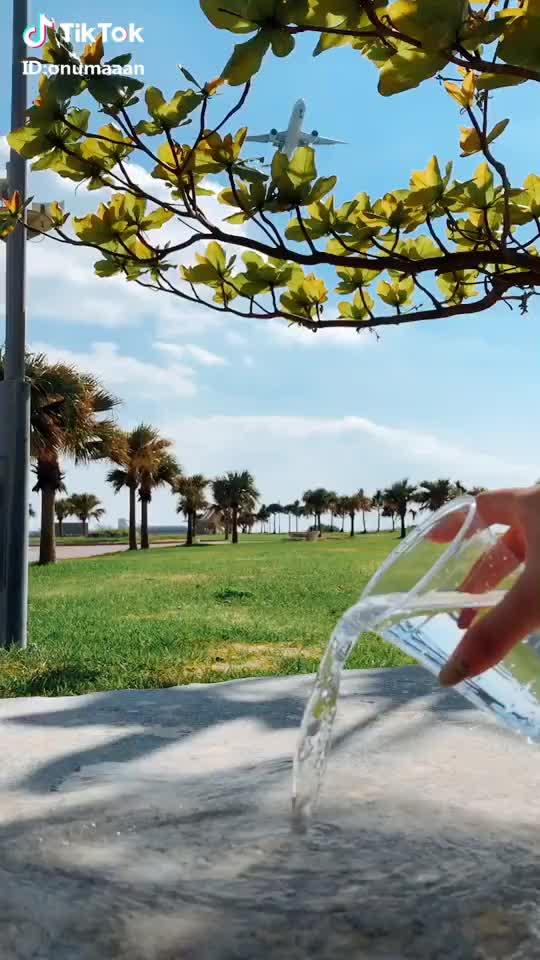 Watch and share 鏡の世界🌳↕️  ウォーターチャレンジやってみた👍🏽 #waterchallenge #ウォーターチャレンジ GIFs by TikTok on Gfycat