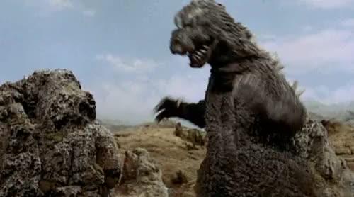 Watch and share Mothra Vs Godzilla GIFs on Gfycat