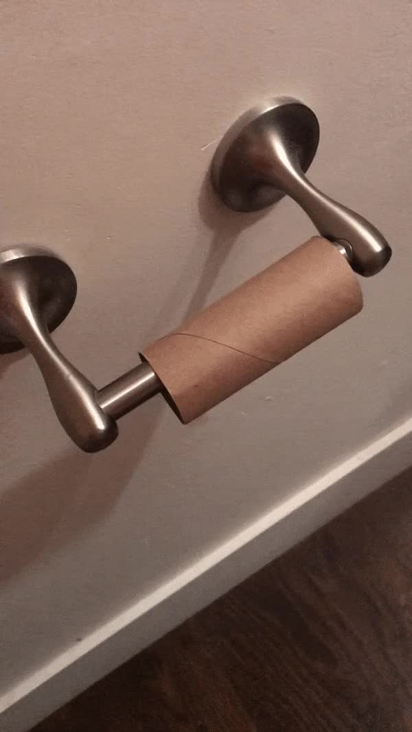 Watch and share Toilet Paper Holder GIFs by 5frogmargin on Gfycat
