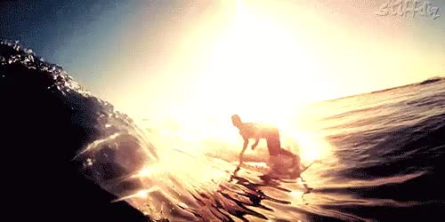 Watch and share Awesome Surf Gifs GIFs and Surf Adventure GIFs on Gfycat