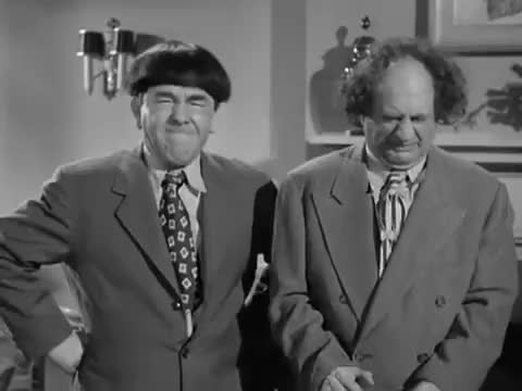 Watch and share Larry Fine GIFs and Moe Howard GIFs on Gfycat