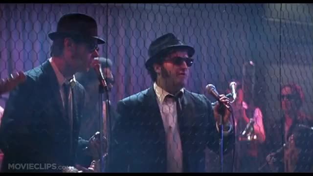 Meilleurs GIFs Blues Brothers Movie | Gfycat