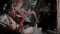 Watch survivor GIF on Gfycat. Discover more gifs: all, gifs: rottr, gifs: tr, lara croft, m: tr, my, queen, rise of the tomb raider, tomb raider GIFs on Gfycat