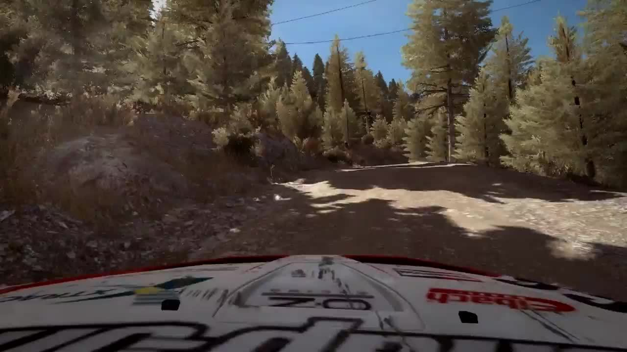dirtgame, DR - Confusing Reset in Greece - POV GIFs