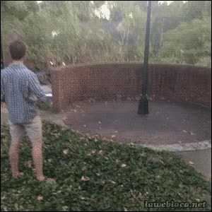 Watch Frisbee trick GIF on Gfycat. Discover more related GIFs on Gfycat