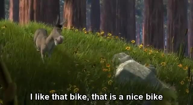 Watch and share Motorcycles GIFs and Donkey GIFs on Gfycat