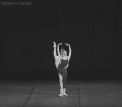 Watch Ballet GIF on Gfycat. Discover more related GIFs on Gfycat