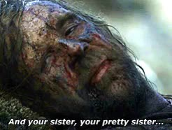 Watch and share Game Of Thrones GIFs and Sandor Clegane GIFs on Gfycat