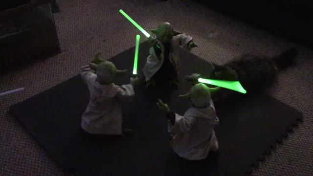 Watch Animatronic Legendary Yoda Battle, 3x Yoda! GIF on Gfycat. Discover more LatinoPeopleTwitter, mexico GIFs on Gfycat