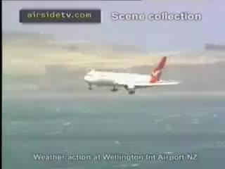 Watch and share Wellington GIFs and Qantas GIFs on Gfycat