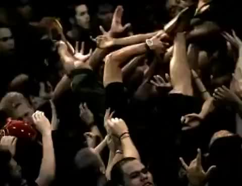 Watch soad GIF on Gfycat. Discover more soad GIFs on Gfycat