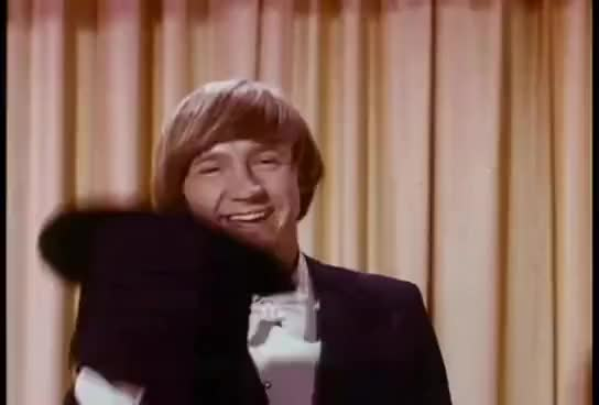 Watch this trending GIF on Gfycat. Discover more billy, contestants, girls, many, monkee, monkees, roy, too GIFs on Gfycat