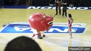 Raptors mascot GIFs