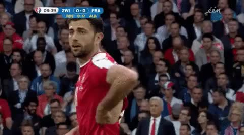 Watch and share Euro 2016 GIFs on Gfycat