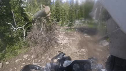 Watch and share Advrider GIFs on Gfycat