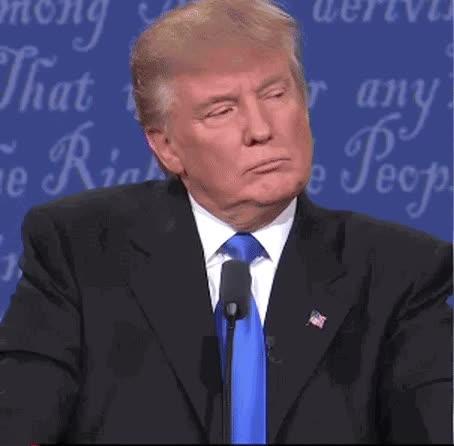 PublicFreakout, adviceanimals, xboxone, Mashable GIF - Trump's 'wrong' is back #debatenight #debate GIFs