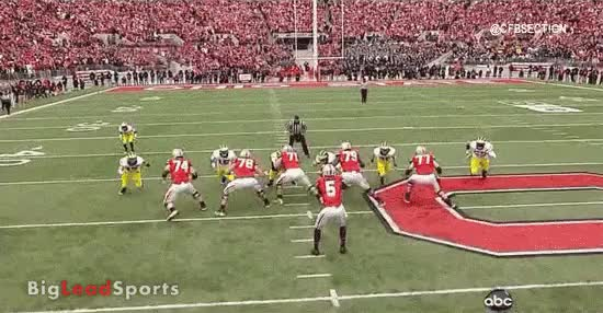 Watch and share Miller Sack GIFs on Gfycat