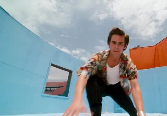 Watch this dumb GIF by ioanna on Gfycat. Discover more ace, carrey, check, checking, curious, dumb, for, jim, look, looking, search, silly, ventura GIFs on Gfycat