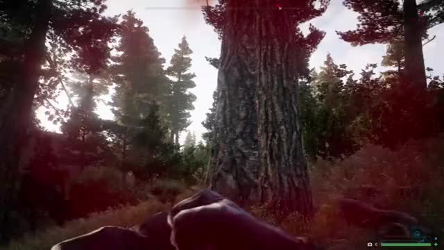 Watch Helo Hunter GIF on Gfycat. Discover more Far Cry 5 GIFs on Gfycat
