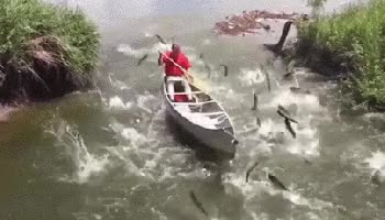 Watch this boat GIF on Gfycat. Discover more boat, transportation GIFs on Gfycat