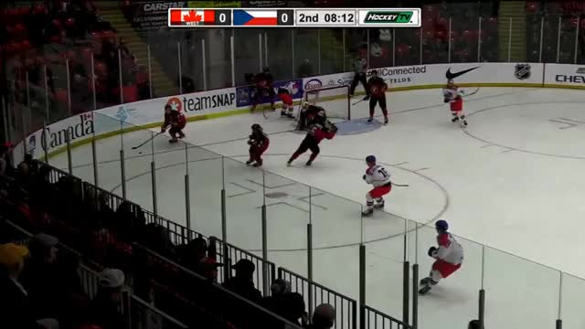 Watch Stapley06-26 19-14 GIF by @rinksideview on Gfycat. Discover more hockey GIFs on Gfycat