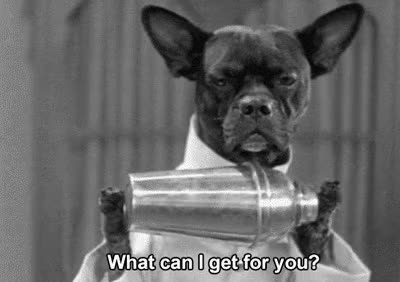Watch and share Dog Cocktail Bartender GIFs on Gfycat