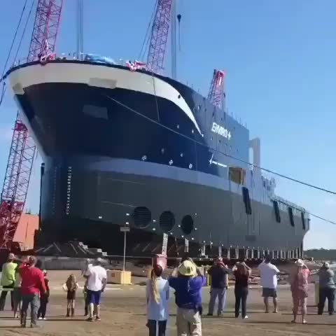 Unloading this ship GIFs