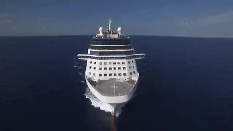 Watch Celebrity Millennium GIF on Gfycat. Discover more related GIFs on Gfycat