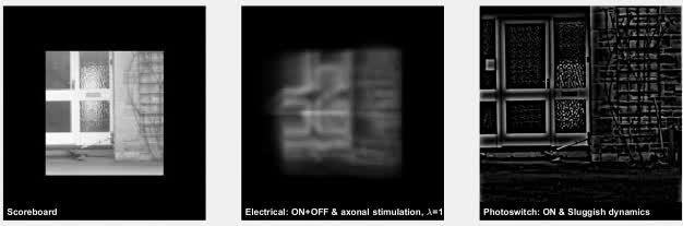 argusII, futurology, simulation, Simulated image stream from ARGUS II Bionic eye GIFs