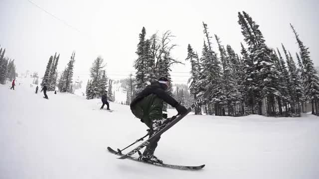 Watch this ski GIF by Newschoolers (@newschoolers) on Gfycat. Discover more creative, exciting, freeskiing, fun, jumps, line skis, powder, rails, skiers, skiing, sports GIFs on Gfycat